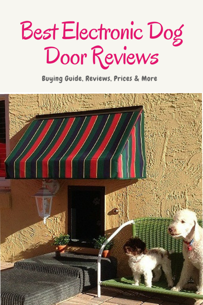 Best Electronic Dog Door Reviews