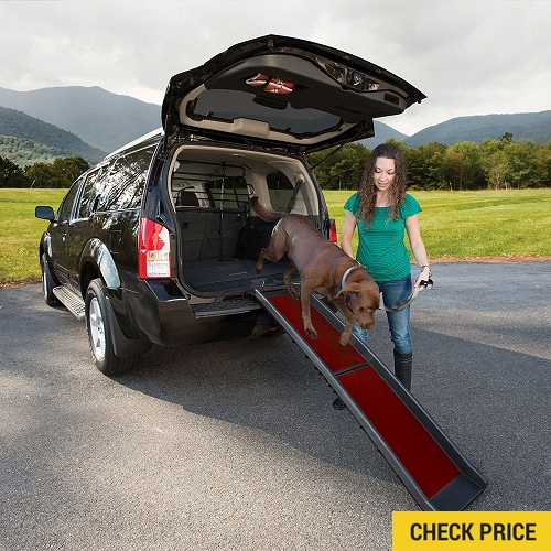 Kurgo Wander Collapsible Dog Ramp